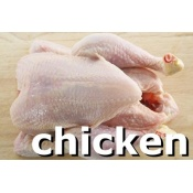 category_chicken